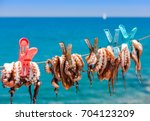 drying the octopus in the sun...   Shutterstock . vector #704123209