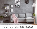stylish living room with... | Shutterstock . vector #704126161