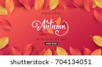 autumn sale background layout... | Shutterstock .eps vector #704134051
