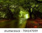 greenish road | Shutterstock . vector #704147059
