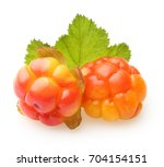 Cloudberry Berry Isolated On...