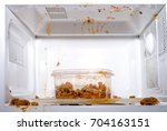 food exploded in microwave oven | Shutterstock . vector #704163151