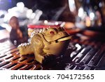clay three toed tea toad with a ... | Shutterstock . vector #704172565