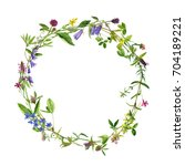watercolor drawing round wreath ... | Shutterstock . vector #704189221