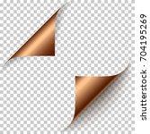 vector realistic bronze foil... | Shutterstock .eps vector #704195269