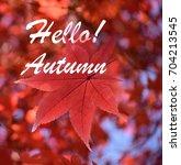 season greeting  hello autumn... | Shutterstock . vector #704213545