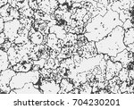 grunge overlay texture with...   Shutterstock .eps vector #704230201