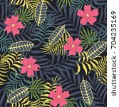 tropical background with palm... | Shutterstock .eps vector #704235169