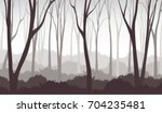 vector illustration of misty... | Shutterstock .eps vector #704235481