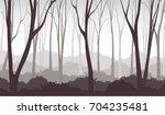 vector illustration of misty... | Shutterstock .eps vector #704235481