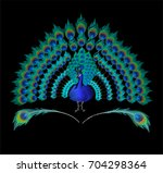 peacock bird and feathers... | Shutterstock .eps vector #704298364