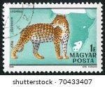 hungary   circa 1981  stamp...   Shutterstock . vector #70433407