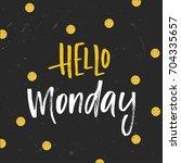 vector trendy hand lettering... | Shutterstock .eps vector #704335657