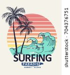 hawaii  aloha surf typography... | Shutterstock .eps vector #704376751
