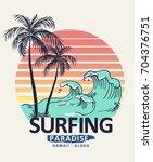 hawaii  aloha surf typography... | Shutterstock .eps vector #704376751