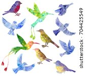 vector set of polygonal birds... | Shutterstock .eps vector #704425549
