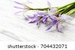 beautiful flowers on white... | Shutterstock . vector #704432071