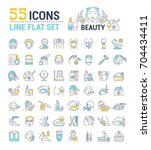 vector graphic set. icons in... | Shutterstock .eps vector #704434411