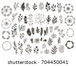 big set of flowers and herbs.... | Shutterstock .eps vector #704450041