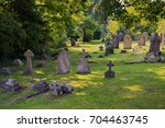 old cemetery in the woods | Shutterstock . vector #704463745