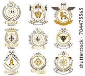 vintage decorative heraldic... | Shutterstock .eps vector #704475565