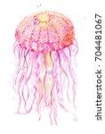 jellyfish watercolor... | Shutterstock . vector #704481067