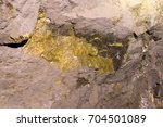ore lode inside a gold and... | Shutterstock . vector #704501089