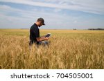 agronomist utilizing a tablet...   Shutterstock . vector #704505001