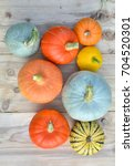 pumpkin and squash varieties on ... | Shutterstock . vector #704520301