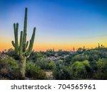 Sonora Sunset