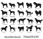 vector set of different breeds... | Shutterstock .eps vector #704659195