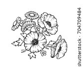drawing flowers on a white...   Shutterstock .eps vector #704709484