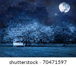 Full Moon Mystic Night In Park
