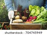 adult farmer man holding fresh... | Shutterstock . vector #704745949