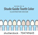 shade guide tooth color...   Shutterstock .eps vector #704749645