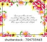 vintage delicate invitation... | Shutterstock . vector #704755465
