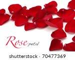 rose petals | Shutterstock . vector #70477369
