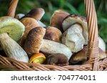 boletus edulis mushrooms in... | Shutterstock . vector #704774011