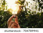 power energy in nature and hand ... | Shutterstock . vector #704789941