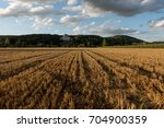 field view on the walhalla... | Shutterstock . vector #704900359