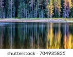 reflections of a green pine... | Shutterstock . vector #704935825