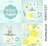 vector set for decoration of... | Shutterstock .eps vector #704957227