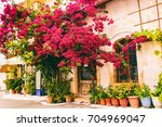 beautiful greek courtyards | Shutterstock . vector #704969047