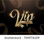 elegant vip member invitation...   Shutterstock .eps vector #704976109