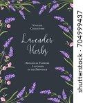 botanical flowers poster. the... | Shutterstock .eps vector #704999437