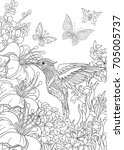 Coloring Page Of Hummingbird ...