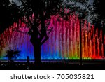 Shadow Tree And Colored Water