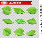 green leaf 3d relaistic icons... | Shutterstock .eps vector #705040735