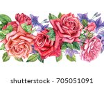 watercolor hand drawing  roses... | Shutterstock . vector #705051091