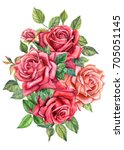 bouquet watercolor hand drawing ... | Shutterstock . vector #705051145